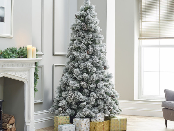 Category Christmas Trees Image